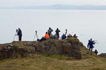 Birding_at_Gullane_Point.jpg